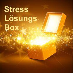 Stress-Loesungs-Box (eBook und Bonus Meditation, Video und PDF) - besonders geeignet für Hochsensible, aber auch alle anderen, die unter Stress leiden