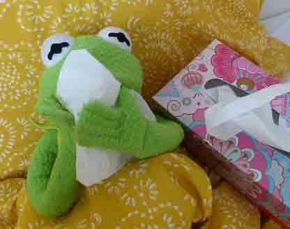 frosch schnupfen