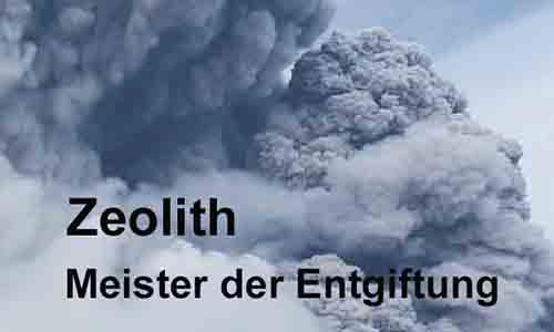 Zeolith Banner