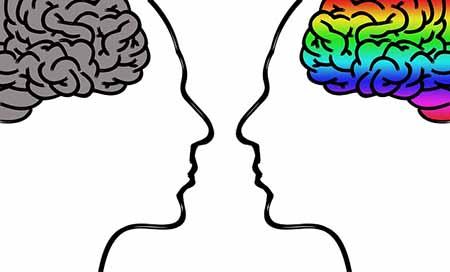 Neuroplastizität