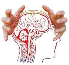 Gehirn umprogrammieren